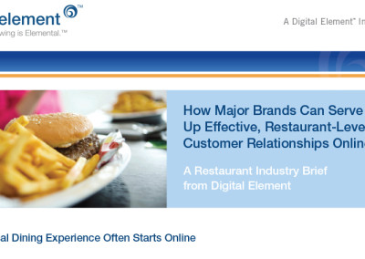 Digital Element Industry Brief